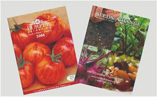 Dollhouse Miniature SEED CATALOG SET/2