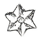 Dollhouse Miniature Large Star ( 4 Per Pack)