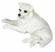 Dollhouse Miniature Spitz, White