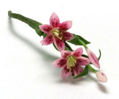 Dollhouse Miniature Tiger Lily, 2 Large Stem, Pink