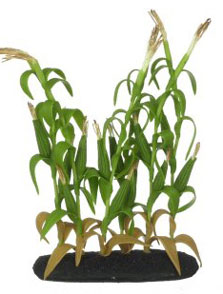 Dollhouse Miniature Small Corn Tree