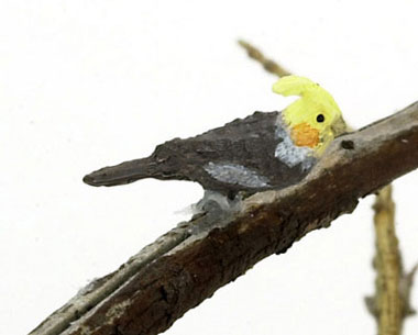 Dollhouse Miniature Cockatiel