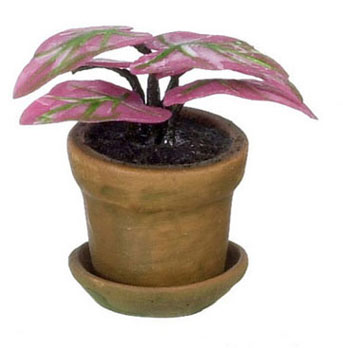 Dollhouse Miniature Caladium, Pink