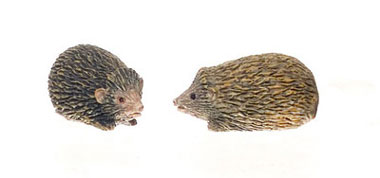 Dollhouse Miniature Hedgehog