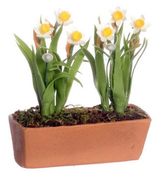 Dollhouse Miniature Daffodils In Window Box, White