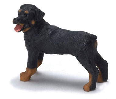 Dollhouse Miniature Rottweiler