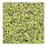 Dollhouse Miniature Fine Foliage/Turf Pale Green