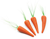 Dollhouse Miniature Carrots, 4/Pk