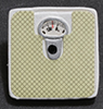 Dollhouse Miniature Bathroom Scale