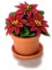 Dollhouse Miniature Poinsettia In Pot, 3 Red Flowers