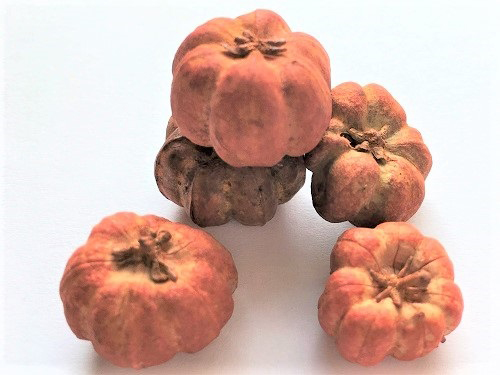 Pumpkins, 6 per package