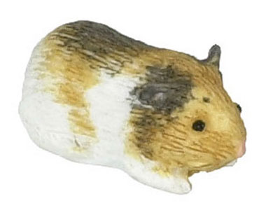 Dollhouse Miniature Guinea Pig