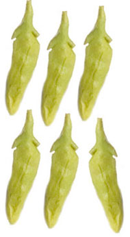 Dollhouse Miniature Snap Peas, 6Pc