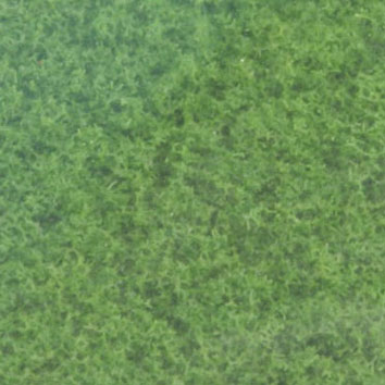 Dollhouse Miniature Turf-Green Grass