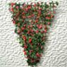 Dollhouse Miniature Vine/Trellis Red