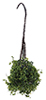 Dollhouse Miniature Hanging Basket: Variegated Green, Small