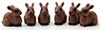 Rabbit, 6pc